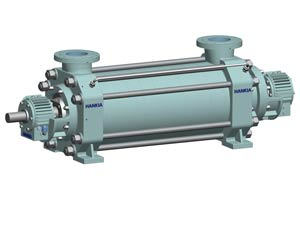 API610 pump, BB4, multistage ring section pump, high pressure pump