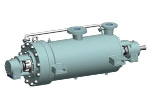 Barrel case pump, extra high pressure pump, API610, ISO13709, BB5